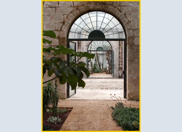 giardinaggio-succulente-puglia_01