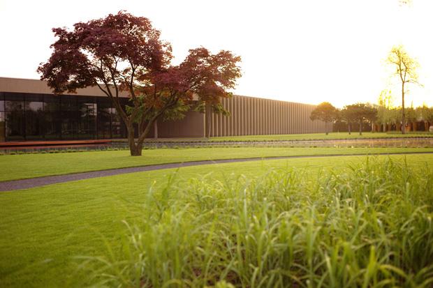 01_museo-alberi