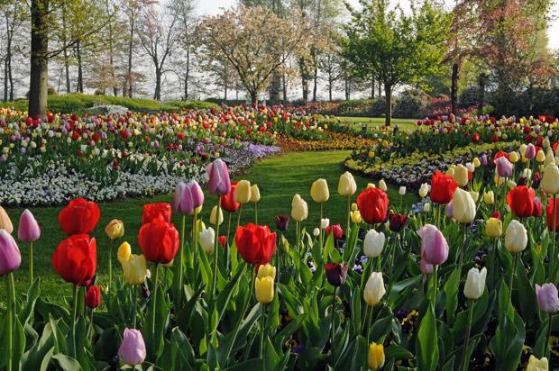 01b_parchi-giardini-olanda
