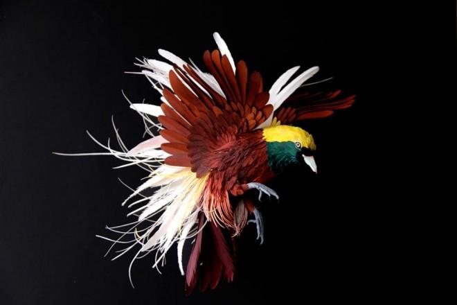 Gru, fenicotteri, pappagalli, aironi, ghiandaie. L'artista colombiana Diana Beltran Herrera li ricrea con la carta, incollando piume e dettagli a uno a uno per poi dipingerli a mano con un effetto incredibilmente realistico.