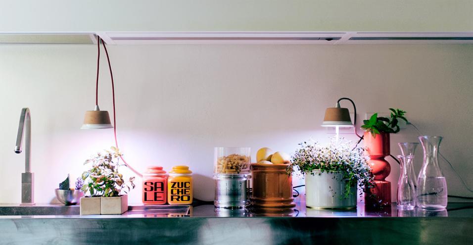 Le lampade LED Bulbo per crescere le piante in casa dove manca la luce del sole. Nell'immagine, in cucina, il modello Cynara nelle due versioni da sospensione e impiantata nel vaso che deve illuminare