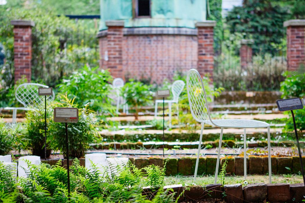 Orto botanico in brera al fuorisalone