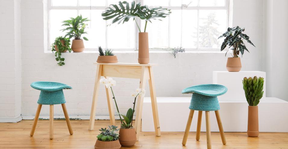 Una selezione di fioriere in plastica, terracotta e legno sia per interni che per esterniUmbrashift