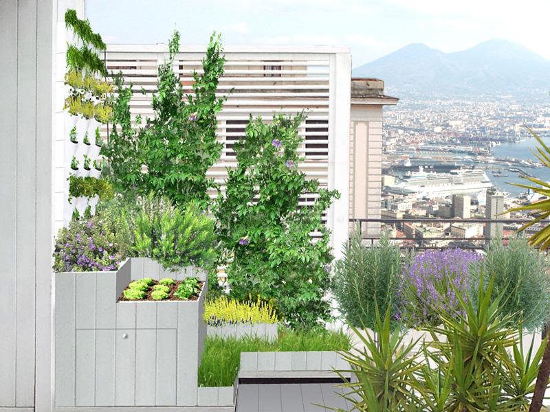 Piante Mediterranee Da Terrazzo : Un orto sul balcone livingcorriere