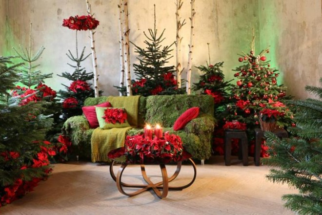 Proposte per decorare la casa con il verde