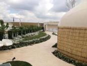 12.000 alberi e 250.000 piante. E anche sui tetti crescono fiori e giardini. Nel sito espositivo di Milano è roof garden mania