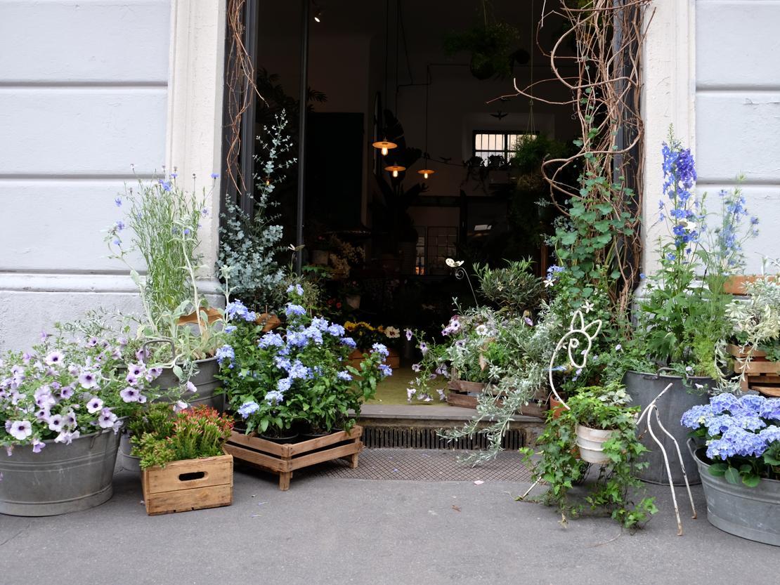 Il filosofo giardiniere livingcorriere for Giardiniere milano