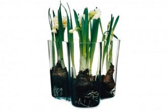 I celebri vasi di Alvar Aalto