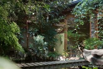 Il GIARDINO orientale della casa di Mauro Bertamè e Alessandra Bramini