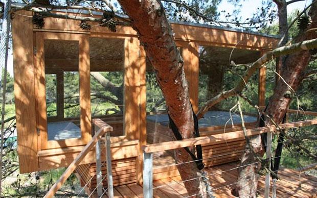 In Puglia la casa-albero progettata dagli architetti tedeschi Baumraum e realizzata dalla pregiata falegnameria piemontese Denaldi. Poggia su due grandi pini e si struttura su due piani
