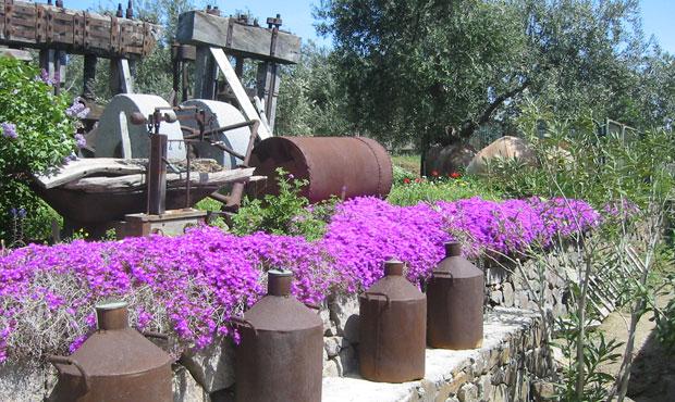 Giardino a Ayvalik