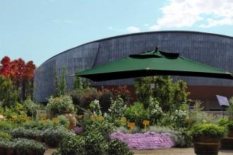 Tante idee per curare il giardino o arredare il balcone. Non manca il dottore delle piante per i meno esperti