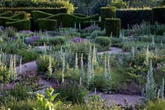 Il giardino di Piet Oudolf con la brina del mattino. Oltre la siepe di Taxus Baccata