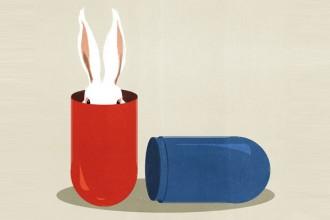 L'illustrazione Medical Mysteries realizzata da Alessandro Gottardo