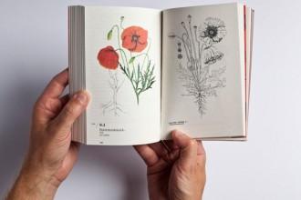 Flora ferroviaria. Ovvero la rivincita della natura sull'uomo (Edizioni Florette) raccoglie le osservazioni botaniche di Ernesto Schick sull'area della stazione internazionale di Chiasso dal 1969 al 1978.