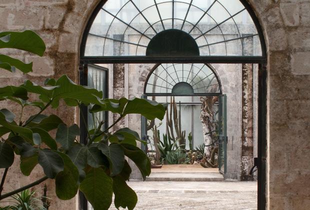Succulente di puglia livingcorriere for Puglia garden city ny
