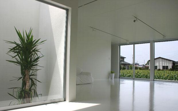 Caratteristica principale della Ginger House è la sensazione di apertura e di ampiezza. A sinistra