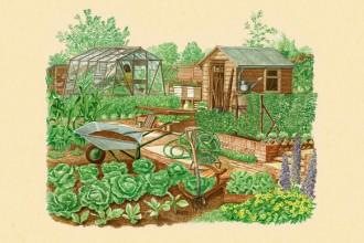 L'orto e il frutteto secondo natura di John Seymour è in libreria per Mondadori