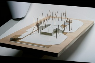 Planimetria generale. Planimetria con l'indicazione delle essenze arboree esistenti