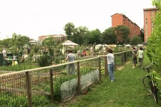 Piccoli giardini in città
