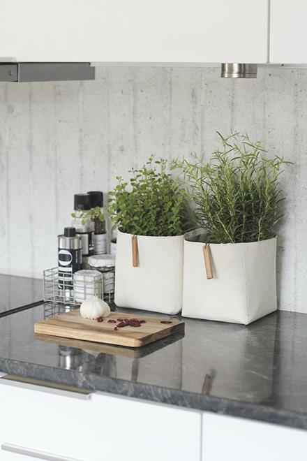 Piante aromatiche da coltivare in cucina - Living Corriere