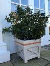 9. vaso Oxford Planters