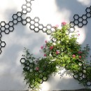 flora-combination