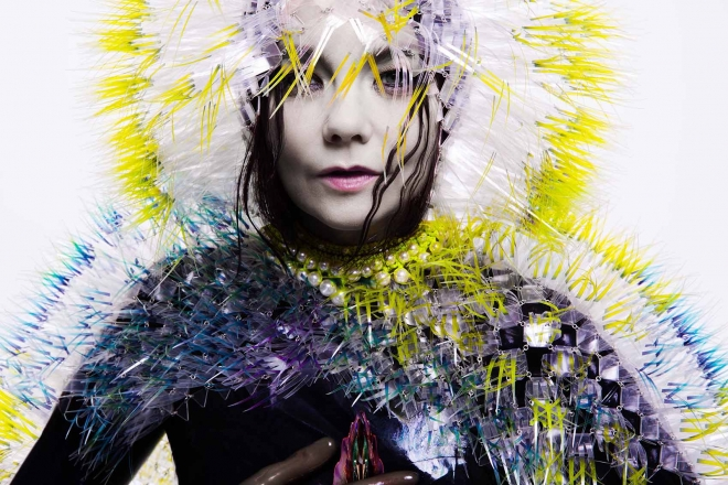 3. Björk, Vulnicura album art