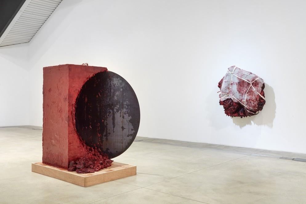 Anish-Kapoor_MACRO-Museo-d'Arte-Contemporanea-Roma-(5)