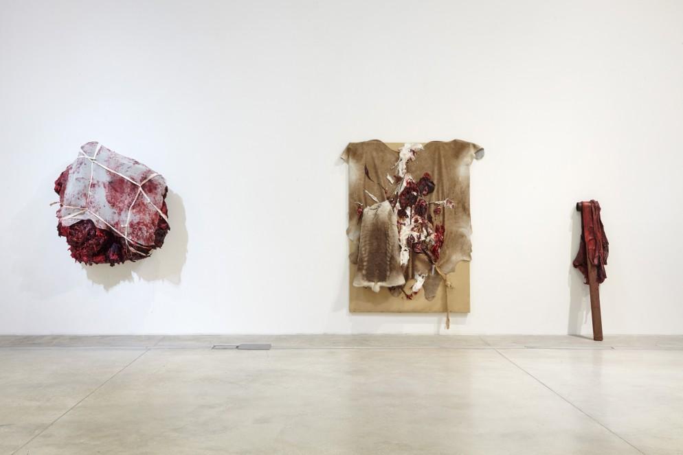 Anish-Kapoor_MACRO-Museo-d'Arte-Contemporanea-Roma-(6)