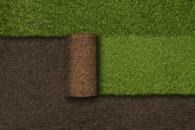 Grass and soil background.