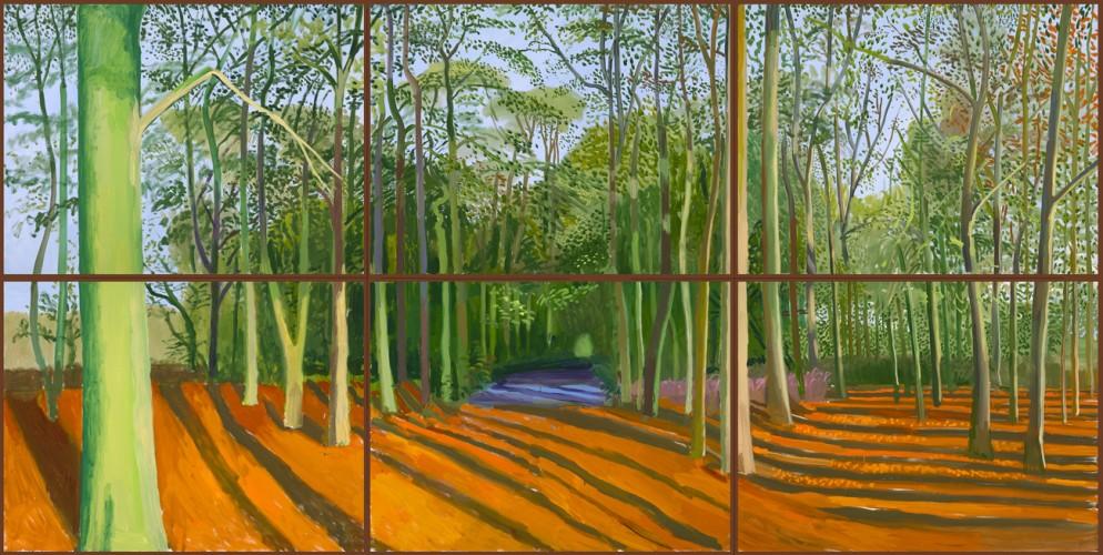 Woldgate Woods, 6 & 9 November 2006 2006