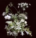 bouquet-flora-starkey-07
