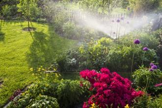 Watering flowerbeds