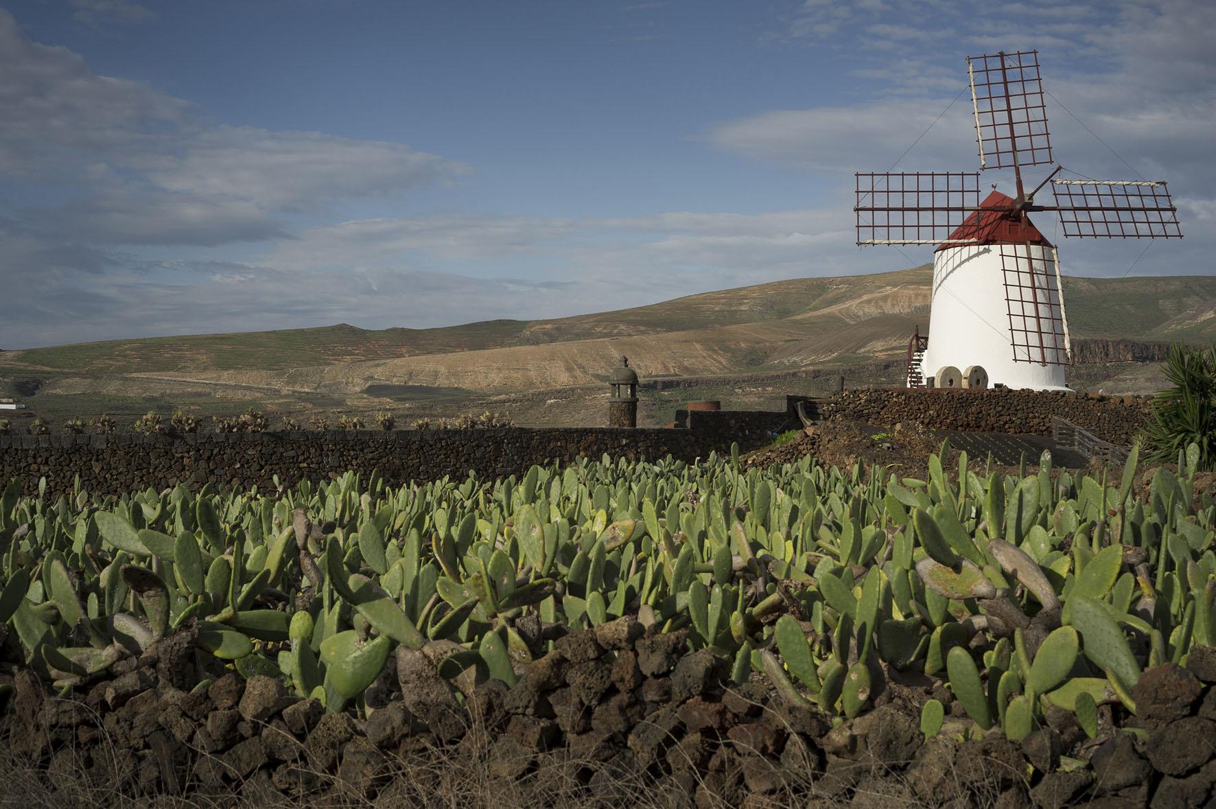 Il Premio Scarpa a Lanzarote - Foto