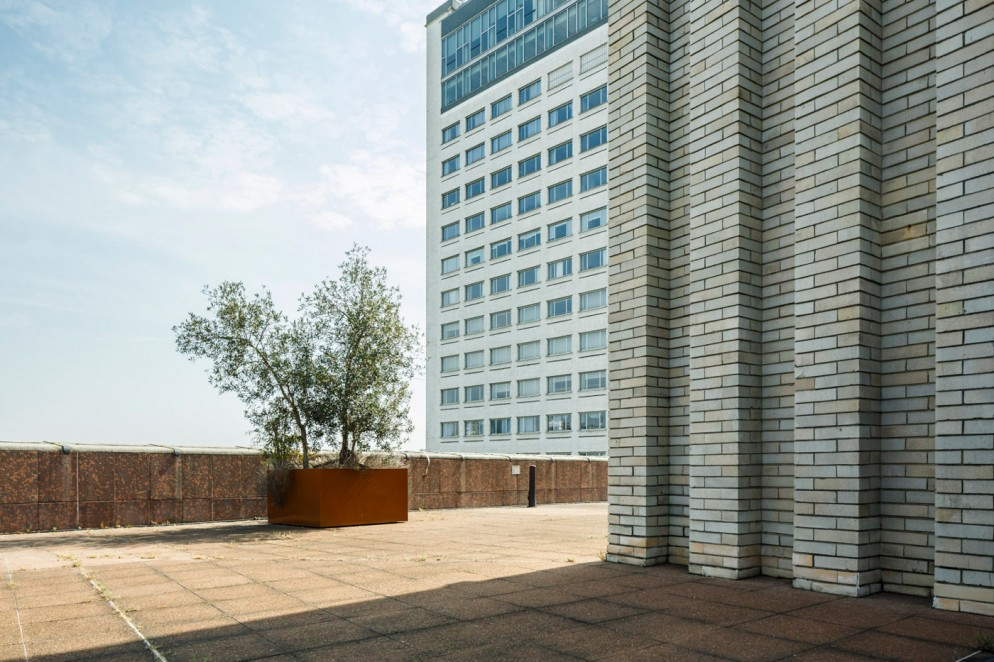Luca-Rotondo-Palazzo Informazione