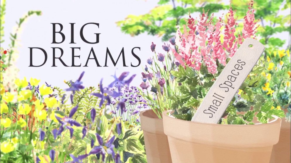 bigdreamssmallspaces-netflix-livingcorriere