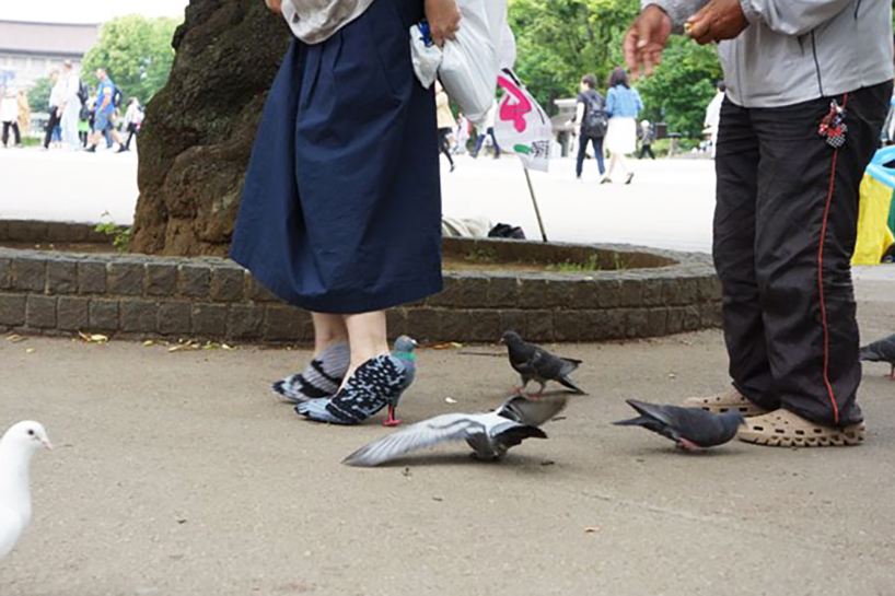 pigeon-shoes-01