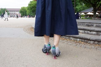pigeon-shoes-03