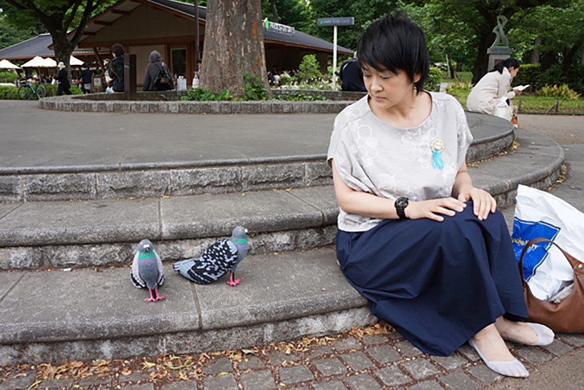 pigeon-shoes-08
