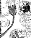 flowering new york [oprt]-livingcorriere