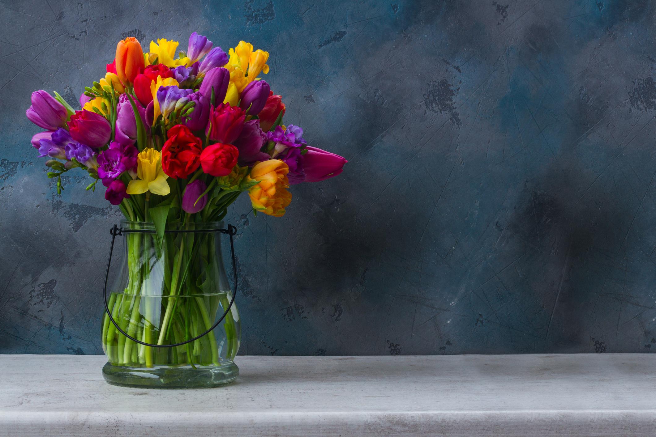 Piante e fiori di marzo livingcorriere for Piante e fiori