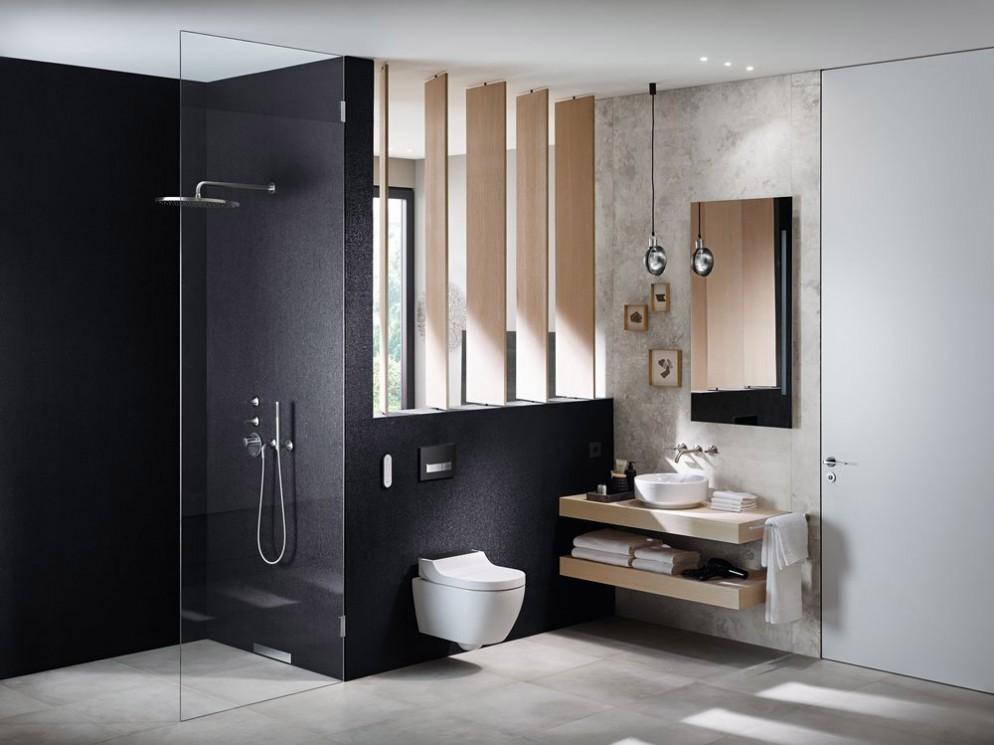 web-2018-Bathroom-02-A-VariForm-Washbasin-AquaClean-Tuma-Comfort-Hotel_preview