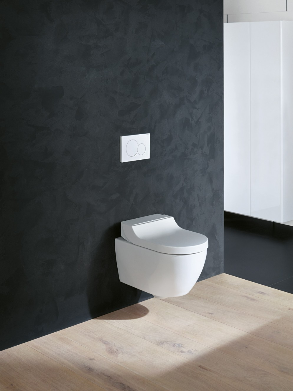 web-2018-Bathroom-06-H-Smyle-Series-with-AquaClean-Tuma-Classic.jpg_IT-it