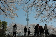 Tokyo-Sky-Tree(C)TCVB_Tokyo-Sky-Tree