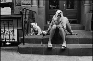 I cani di Elliott Erwitt