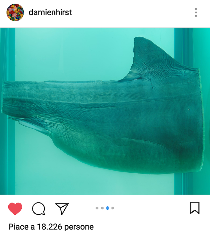 squalo-damien-hirst