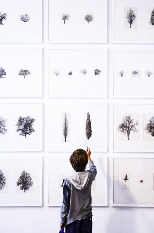 7_Italy - L'ARCHITETTURA DEGLI ALBERIlondon-design-biennale-living-corriere