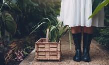 Gardener in greenhouse with plants in basket on floor