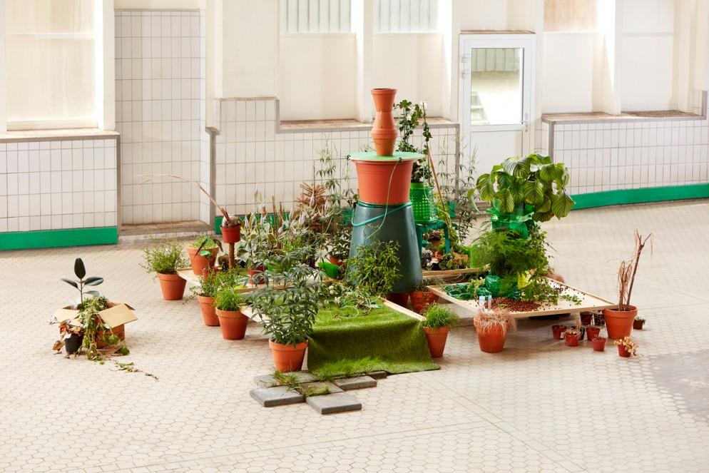 1_Minji Choi_The Dignity of Plants_01_Photo Credit Ronald Smits